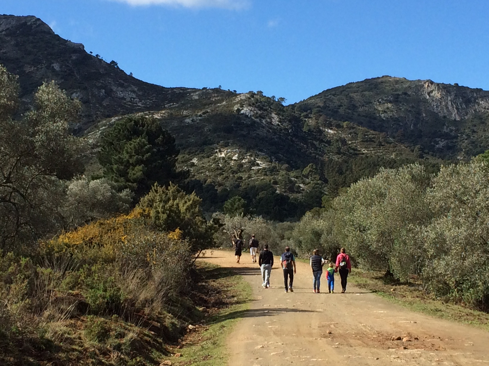 Restaurant in Estepona - Guided hiking tour to La Concha
