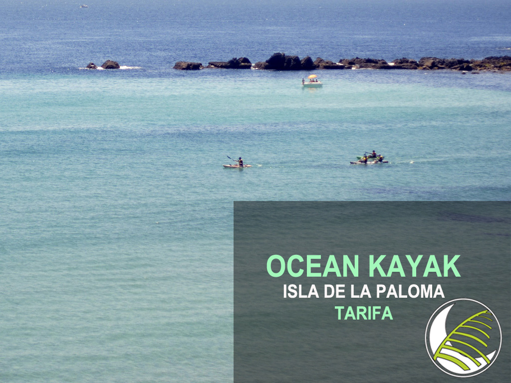 Things to do in Costa del Sol - Kayak Tour Isla de la Paloma