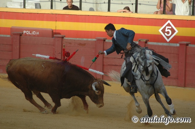 Events and Shows - Bullfighting in Andalusia
