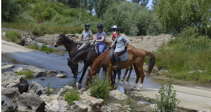Things to do in Costa del Sol - River crossing tour