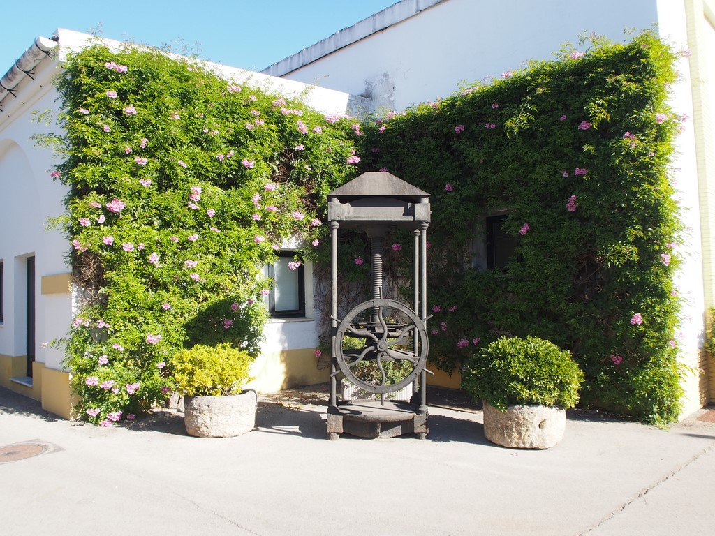 Restaurant in Sotogrande - Lustau