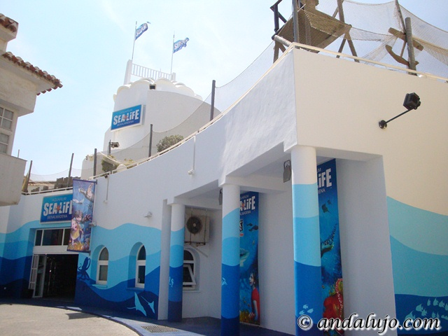 Restaurant in Estepona - Sea Life